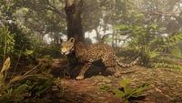 Legendary Iwakta Panther newswire rdo