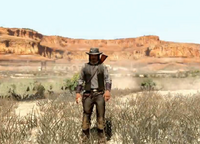Rancher outfit