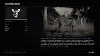 Compendium Whitetail Deer