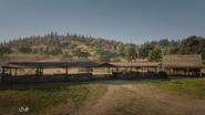 MacFarlane's Ranch13