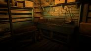 Watson's Cabin05