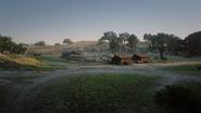 MacFarlane's Ranch15
