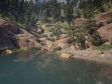 Calumet Ravine