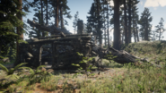 Bearclaw Camp03