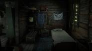 Watson's Cabin08