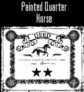 Painted Quarter Horse03