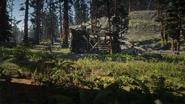 Bearclaw Camp02