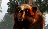 Ours mort-vivant01