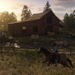 Downes Ranch05.jpg