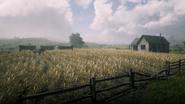 Guthrie Farm05