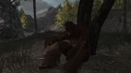 L'abominable homme des collines05