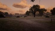MacFarlane's Ranch18