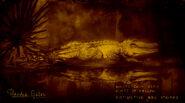 Alligator à bandes légendaire