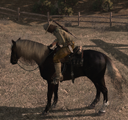 Cheval de bataille01