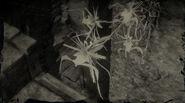 Orchidée fantôme