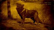 Loup d'onyx légendaire