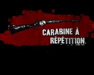Carabine à répétition15