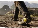 Talismans et amulettes dans Red Dead Redemption II