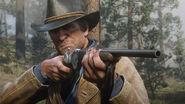 Carabine à répétition17