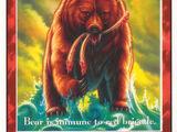 Bear (D)