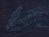 Sonar Whales