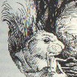 Marlfox Characters