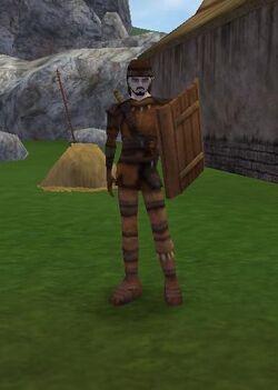 A starter warrior with a pelt armor.