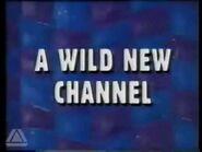 Cartoon Network (Europa) - 1993