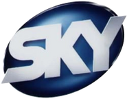 Sky Entertainment Channel In Scandinavia (1997-1999)
