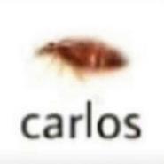 Carlo2s