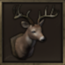 Deer Head Trophy