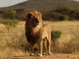 Etiópico