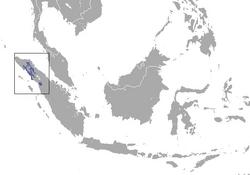 250px-Sumatran Orangutan area.png