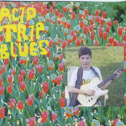 Acid Trip Blues