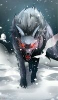 Frontal View of a Demonic Wolf