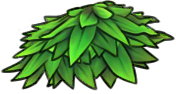 Fern Icon 001.png