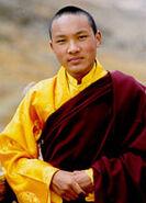 Karmapa Urgyen Trinley Dorje1