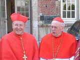 Cardinal (Catholicism)/Vesture and privileges