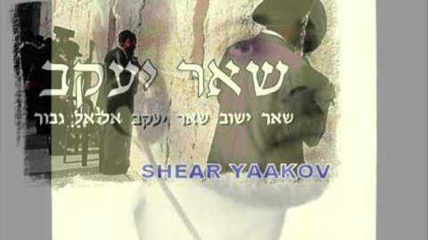 Shabbat Shalom - שבת שלום!