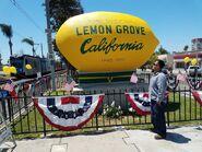 Lemongrove1