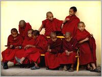 Lil monks-2285.jpg