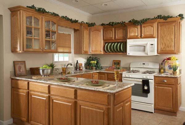 Kitchen Cabinets Renopedia Wiki Fandom