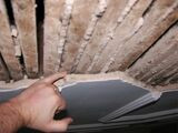 Ceiling Defects