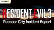 Resident Evil - Raccoon City Incident Report