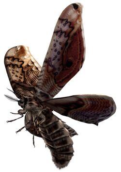 Giant Moth.jpg