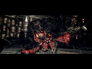 Experiment facility re5 (7)