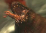 Malacoda-infested whale head closeup