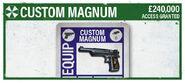 Custom Magnum BG