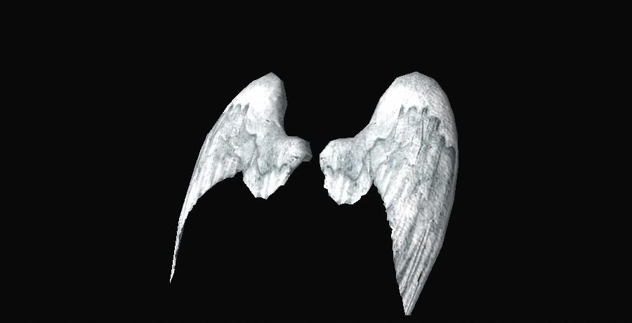 Alas de ángel