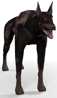 Zombie Dog.png